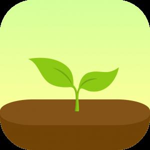 Apps für Studenten Forest