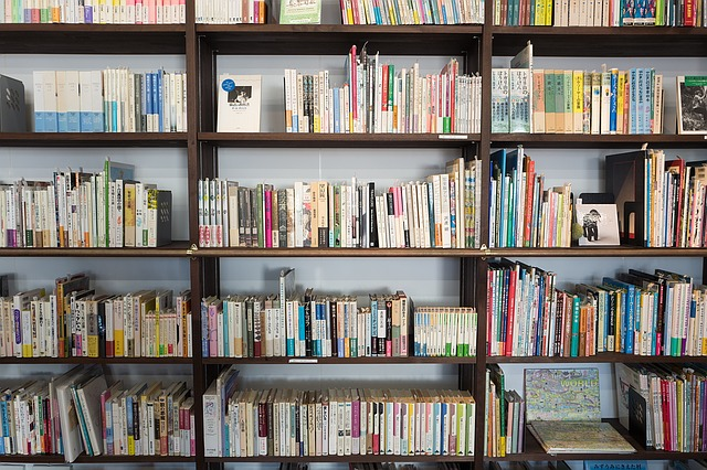 Literaturrecherche wissenschaftliche Arbeit